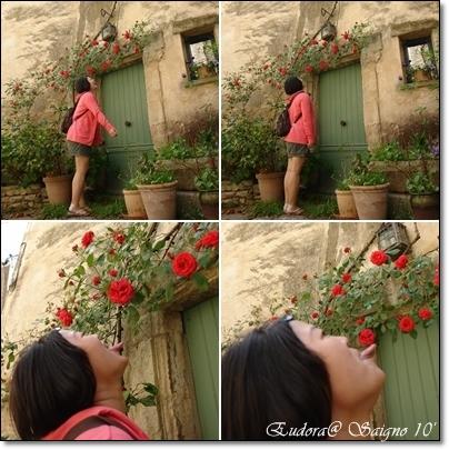 舔花.jpg