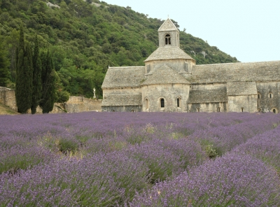 abbaye-notre-dame-senanque-abbaye-preferee-france_240823.jpg