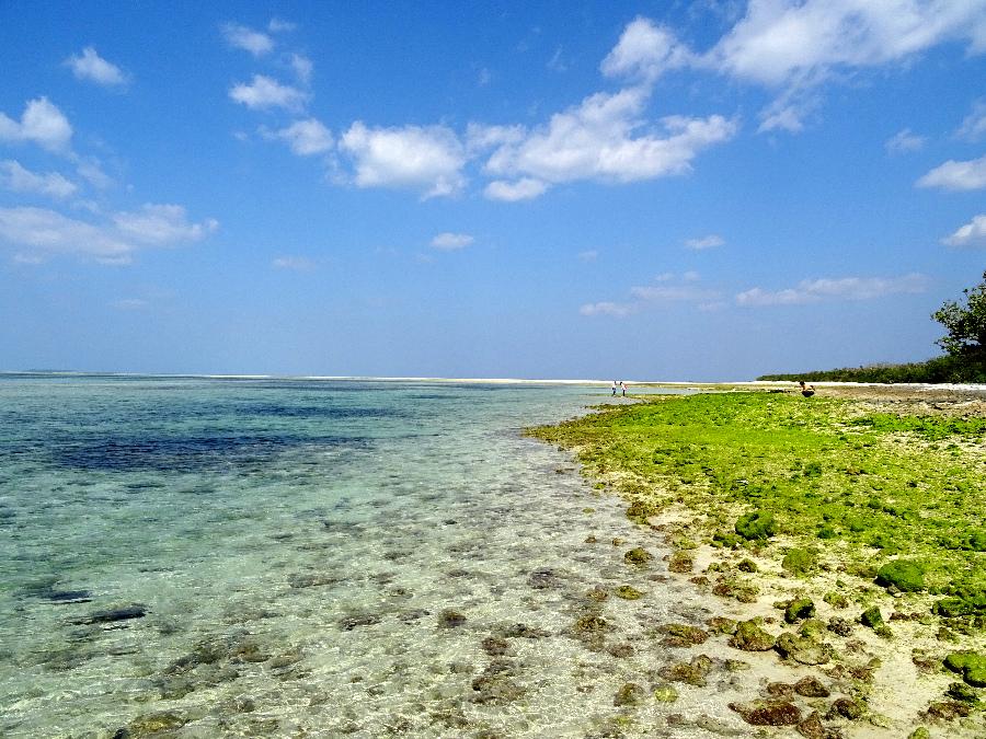 沖繩散步大冒險 (3).jpg