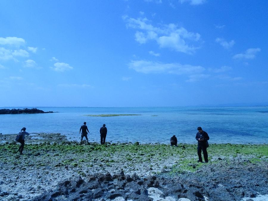 沖繩散步大冒險 (5).jpg