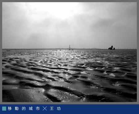 生命之海006.jpg