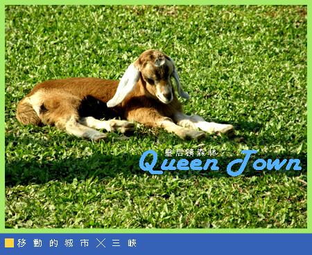皇后鎮森林017.jpg