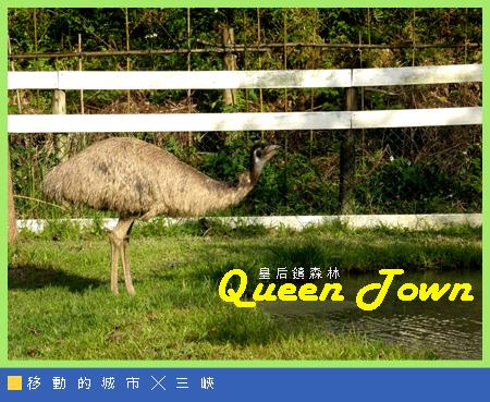 皇后鎮森林018.jpg