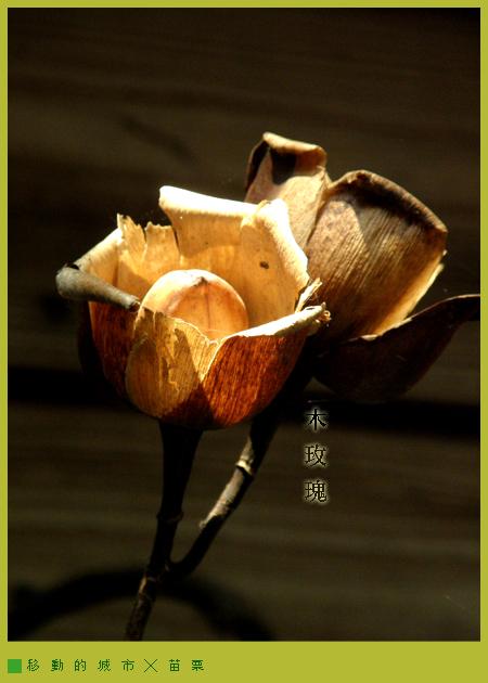 華陶窯06.jpg