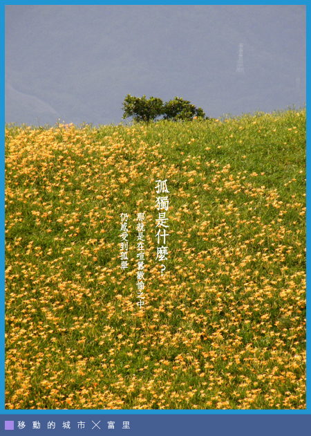 金針花-06.jpg