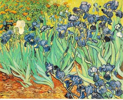 van-Gogh04.jpg