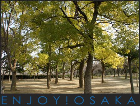 大阪-10.jpg