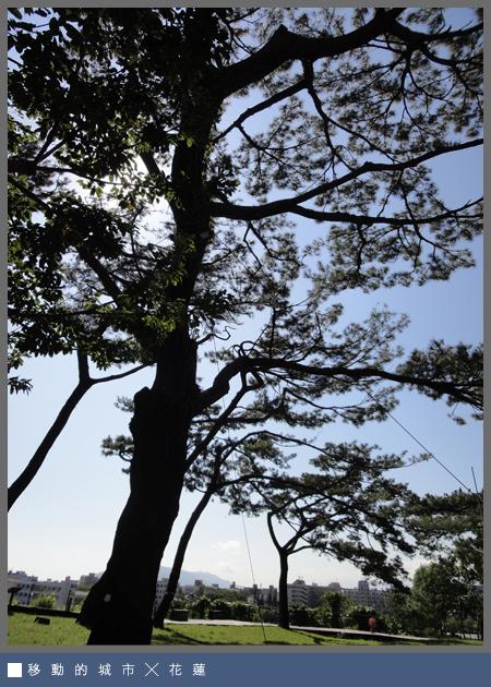 松園別館12.jpg
