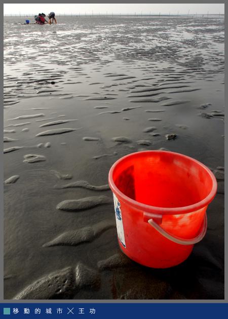 生命之海015.jpg