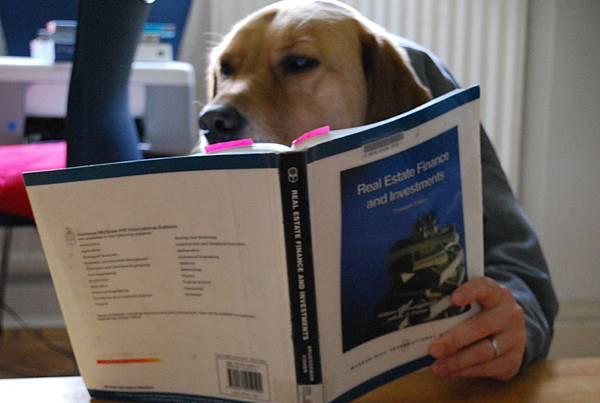 Hector studies Finance