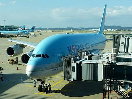 airplane-163926_1280.jpg
