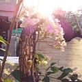20140201_071952.jpg