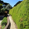 1206 Ashcombe Maze-out side.jpg