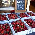 Sunny Ridge- Fresh Strawberry.jpg
