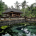 Bali-聖泉寺3