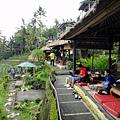 Bali- Teras Padi RC
