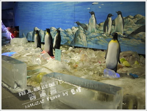 南北極地風光05.jpg