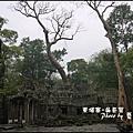 01-009-吳哥窟-塔普倫寺.jpg