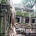 01-011-吳哥窟-塔普倫寺-像被蛇纏繞的榕樹.jpg