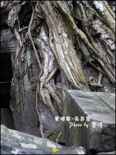 01-028-吳哥窟-塔普倫寺-隱藏的微笑.jpg