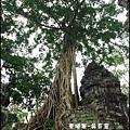 01-030-吳哥窟-塔普倫寺-像血管般纏繞的榕樹.jpg
