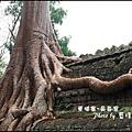 01-033-吳哥窟-塔普倫寺-最知名的巨木.jpg