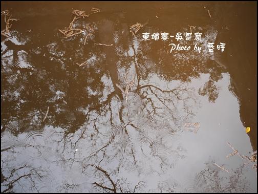 01-039-吳哥窟-塔普倫寺-水中倒映.jpg