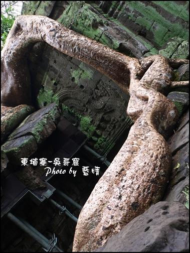 01-060-吳哥窟-塔普倫寺-像大蟒蛇的樹根.jpg