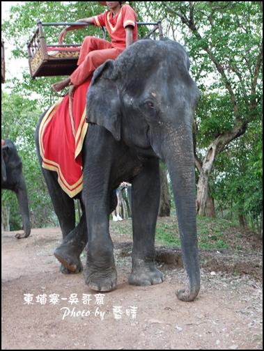 08-026-吳哥窟-巴肯山看日落-翹腳大象.jpg