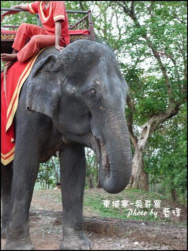 08-0234-吳哥窟-巴肯山看日落-大象.jpg