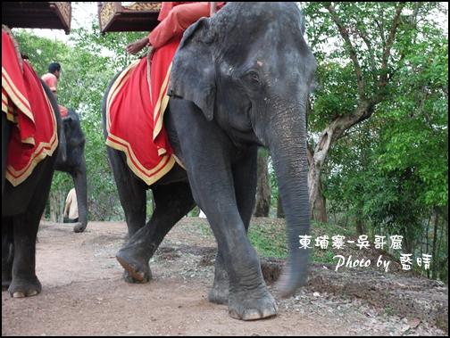 08-0245-吳哥窟-巴肯山看日落-翹腳大象.JPG