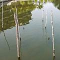 052-48普爾曼湖畔飯店-清晨
