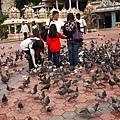 043-29黑風洞-餵鴿子