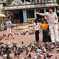 043-33黑風洞-餵鴿子