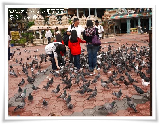 043-11黑風洞-餵鴿子