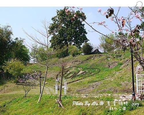 青青湖畔-17.jpg