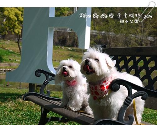 青青湖畔-32.jpg