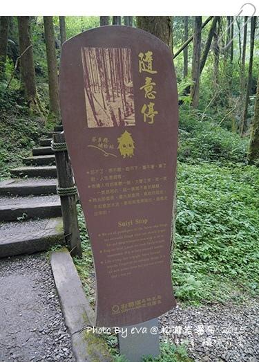 杉林溪松瀧岩瀑布-07.jpg