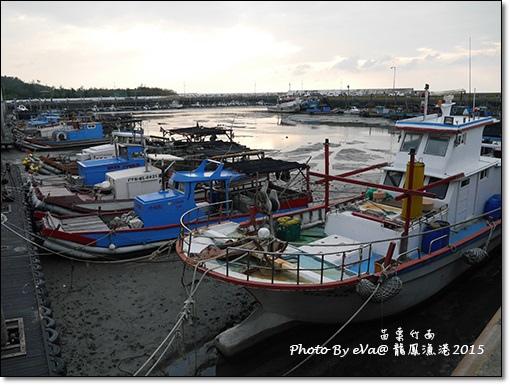 龍鳳漁港-09.jpg