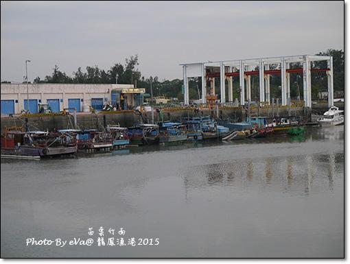 龍鳳漁港-11.jpg