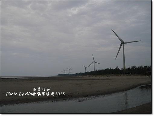 龍鳳漁港-13.jpg