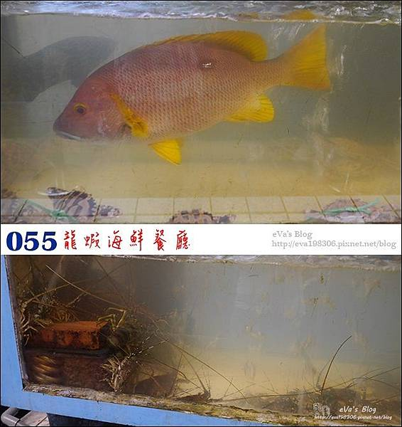 055-05.jpg