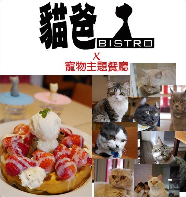 貓爸-01.jpg