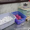 西海岸活蝦-39.jpg