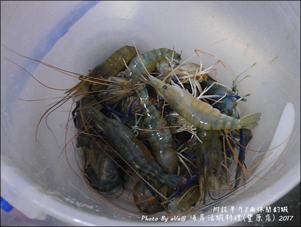 西海岸活蝦-40.jpg