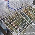 西海岸活蝦-43.jpg