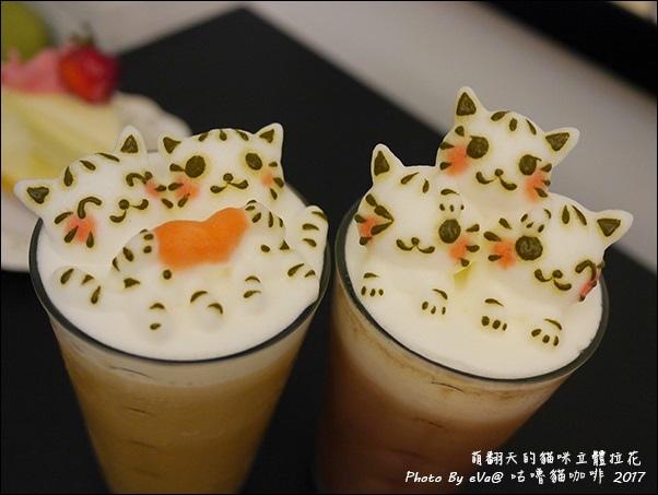 咕嚕貓咖啡-50.jpg