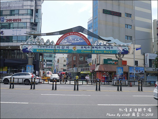 釜山day4-52.jpg