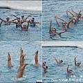 野柳海洋世界-09.jpg