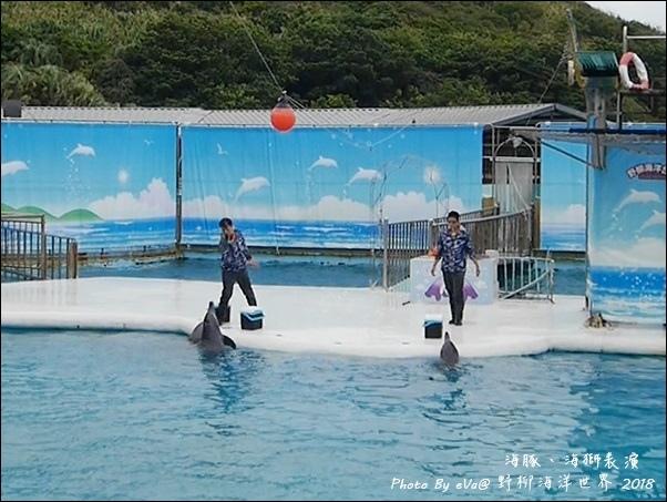 野柳海洋世界-38.jpg